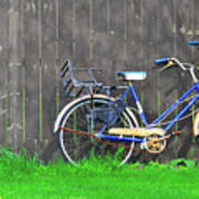 Bicycle And Gray Fence Art Print