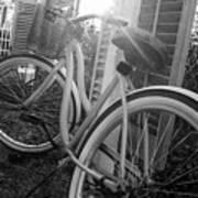 Bicycle In The Sun Art Print