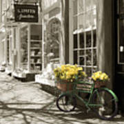 Bicycle With Flowers - Nantucket Art Print