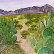 Big Bend Landscape Art Print