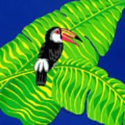 Big Billed Bird Art Print