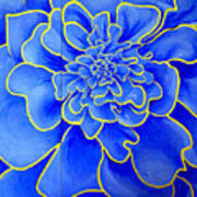 Big Blue Flower Art Print by Geoff Greene