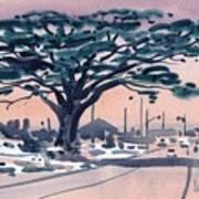 Big Cypress Half Moon Bay Print by Donald Maier