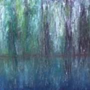 Big Cypress Swamp Art Print
