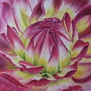 Big In Pink Art Print