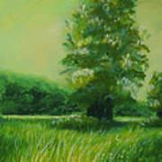 Big Otter Creek - High Noon Art Print