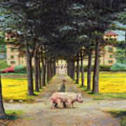Big Pig - Pistoia -tuscany Art Print