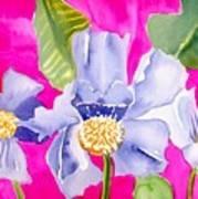 Big Pink  Flowers Art Print