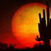 Big Saguaro Sunset Art Print
