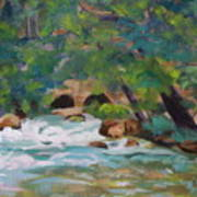 Big Spring On The Current River Art Print
