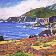 Big Sur Wildflowers - Plein Air Art Print