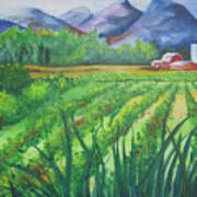 Big Valley Farm Art Print