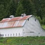 Big White Old Barn With Rusty Roof  Washington State Art Print