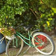Bike In Maupiti Art Print