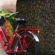 Bike Resting Art Print