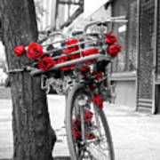Bike With Red Roses Art Print