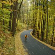 Biker On Road Amidst Fall Foliage Art Print