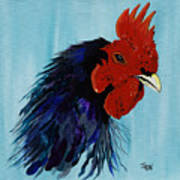 Billy Boy The Rooster Art Print