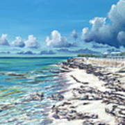 Bimini Breeze Print by Danielle  Perry