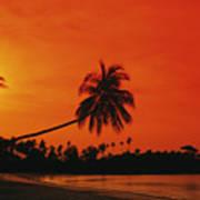 Bintan Island Beach Art Print