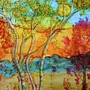 Birch And Liquid Amber Art Print