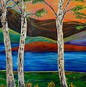 Birch By The Lake Art Print