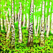 Birch Forest, Painting Art Print