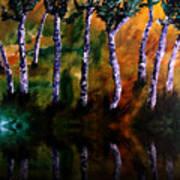 Birch Forest Reflections Art Print