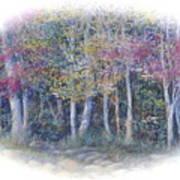 Birch Tree Gathering Art Print