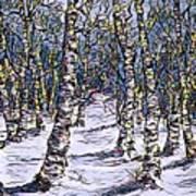 Birch Tree Mosaic 2 Art Print