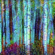 Birch Woods Art Print