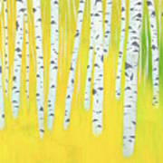 Birch Woods Art Print