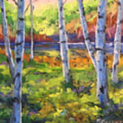 Birches 01 Art Print