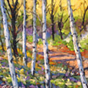 Birches 02 Art Print