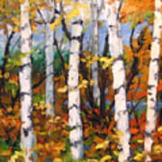 Birches 03 Art Print