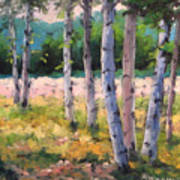 Birches 04 Art Print