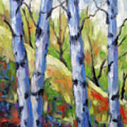 Birches 09 Art Print