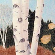 Birches Art Print by Betsy Gray Bell