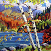 Birches By The Lake Art Print