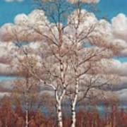 Birches In The Spring Art Print