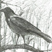 Bird, 2011 Art Print