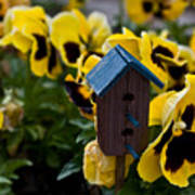Bird House And Pansies Art Print