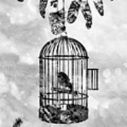Bird In A Cage-black Art Print