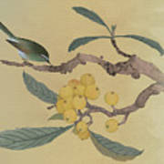 Bird In Loquat Tree Art Print