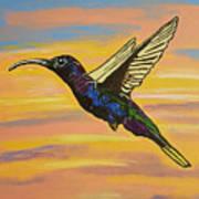 Bird Of Beauty, Superwoman Art Print