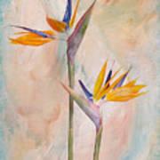 Bird Of Paradise I Art Print