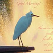 Birds And Fun At Butler Park Austin - Birds 3 Detail Macro Poster - Good Morning Art Print
