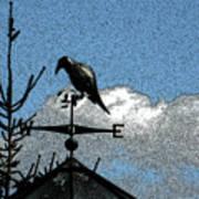 Bird's Eye View I Art Print