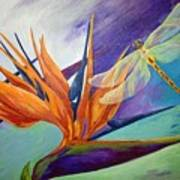 Birds In Paradise Art Print
