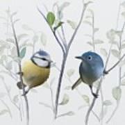 Birds In Tree Art Print